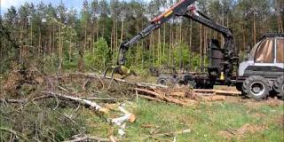 Embedded thumbnail for 23.05.2018 - Prace porządkowe po wycince drzew w miejscowości Rudka w km 10+350
